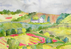 watercolor-CotswoldPoppies568-large